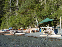 Spyhop basecamp - Pacific Northwest Expeditions, Johnstone Strait