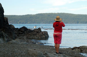 Whale watching from Pacific Northwest Expeditions Johnstone Strait basecamp